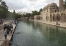 Le bassin d'Ayn-Züleyha