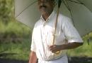 Dans la plantation de cocotiers, le patron inspecte