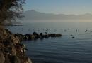 Lausanne, Vidy