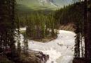 Chutes Athabasca