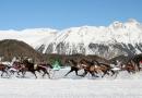 Skijöring à Saint-Moritz
