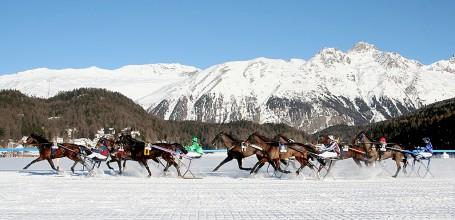 Course de chevaux à St-Moritz