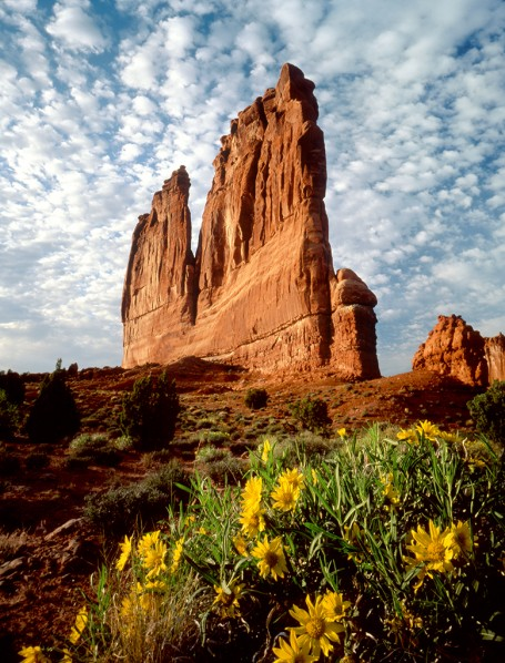 arches-national-park © Utah Office of Tourism - Tom Till