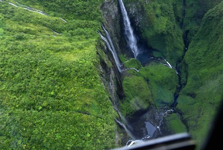 Jungle, precipite et chutes d'eau