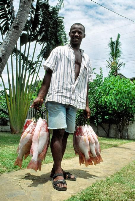 Pêcheur qui tient des grappes de poissons