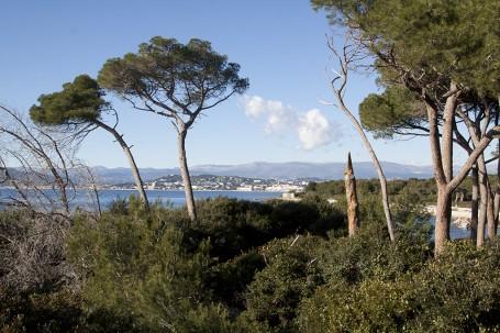 Iles Leirins Cannes